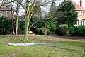 Crocus in West Park - geograph.org.uk - 1753401.jpg