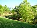 Culori de primavara (Spring colors) - panoramio.jpg