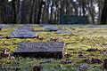 Dülmen, Hausdülmen, Ehrenfriedhof -- 2015 -- 5402.jpg