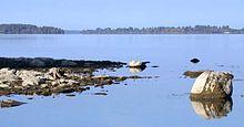 Die sint-laurens naby die robert moses state park se duisend eilande