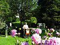 Dahlienblüte in der Lichtentaler Allee - panoramio.jpg
