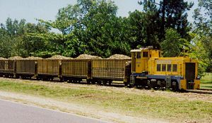 Narrow-gauge railways in Australia - Sugar train near Mossman in 1995