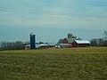 Dairy Farm Near Rockdale - panoramio.jpg