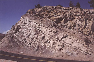 Dakota Formation - Road cut into the lower Dakota Group at crest of Dinosaur Ridge, near Golden, Colorado
