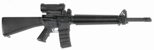 Danish AR M95