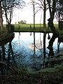 Dark pond on the green - geograph.org.uk - 1614198.jpg