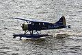 De Havilland Canada DHC-2 D-FVIP.jpg