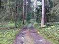 Degučių sen., Lithuania - panoramio (214).jpg