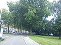 Delft - 2011 - panoramio (218).jpg
