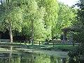 Der Schwanenteich mit Pavillon - Eschwege - panoramio.jpg