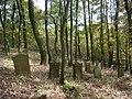 Der alte jüdische Friedhof in Sontra.jpg