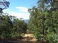Descending into Bendethera - panoramio.jpg