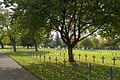 Deutscher Soldatenfriedhof Neuville-Saint-Vaast-7.JPG