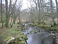 Devil's Water - geograph.org.uk - 1262684.jpg