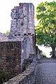 Dilsberg, Burg Neckargemünd 20170608 002.jpg