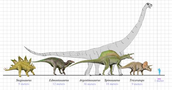 Arbeitsblatt: Dinosaurier Ei