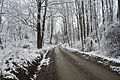 Dirt road in winter edit.jpg