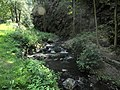 Divoká Šárka - panoramio (17).jpg