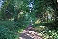 Downs Link, Cranleigh Common - geograph.org.uk - 2051696.jpg