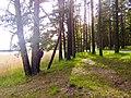 Druvciems - panoramio (31).jpg
