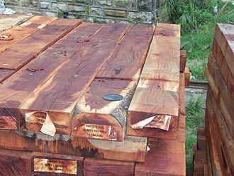 Quebracho tree - Quebracho colorado wooden sleepers of Argentine origin in Uruguay