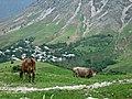 Dushanbe area hike (17751144416).jpg
