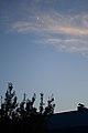 EVENING BLUE SKY from SUVOROVA 13th (2012-06-24 21-09-04) - panoramio.jpg
