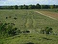 Earthwork, Sidbury Hill - geograph.org.uk - 433787.jpg