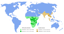 Kind distribution of the brown elephant Asian elephant, African elephant green