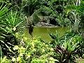 Embalse Dos Bocas de Utuado, Puerto Rico - panoramio (2).jpg