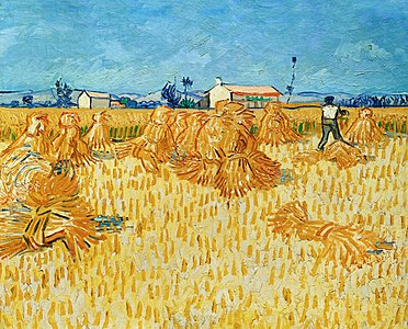 A photograph of Van Gogh's Harvest in Provénce (1888).
