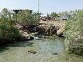 Ethiopie-Lac salé Afdera (14).jpg