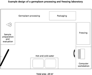 Cryoconservation of animal genetic resources - Example freezing laboratory