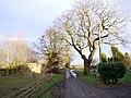 Farm track at West Heddon - geograph.org.uk - 1124328.jpg