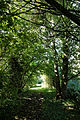 Feeringbury Manor garden path, Feering Essex England.jpg