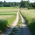 Feldweg zwischen Huppen- und Poxdorf - panoramio.jpg