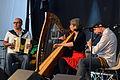 Fest-noz Festival de Cornouaille 2013 - Tobie-Trouillaud-Sérot 01.jpg