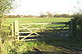 Field gate, with M55 beyond - geograph.org.uk - 80447.jpg