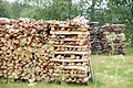 Firewood-Torne valley.JPG
