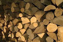 Resultado de imagen de madera