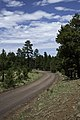 Flagstaff Scenery near FR 522 - panoramio (1).jpg