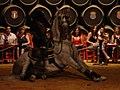 Flamenco-Caballo-Dsc03000.jpg