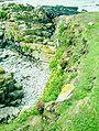 Flat Holm Geology.jpg