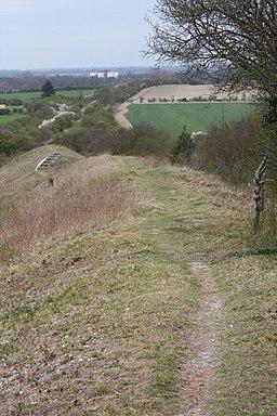 Fleam Dyke at Mutlow Hill - geograph.org.uk - 1259231