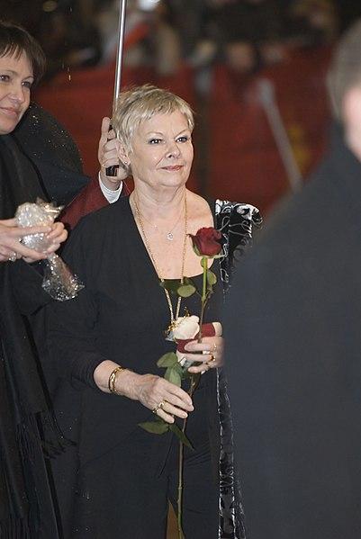 File:Flickr - Siebbi - A rose for Dame Judi Dench.jpg - Wikimedia Commons
