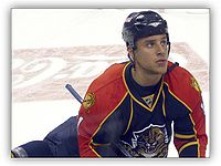 Florida Panthers - 11 Gregory Campbell.jpg