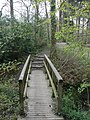 Footbridge, at Stover Country Park - geograph.org.uk - 1254618.jpg