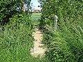 Footbridge near Moat Farm - geograph.org.uk - 1344993.jpg