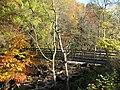 Footbridge over the River East Allen (4) - geograph.org.uk - 1586064.jpg