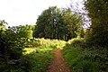 Footpath on View Island (geograph 2125833).jpg